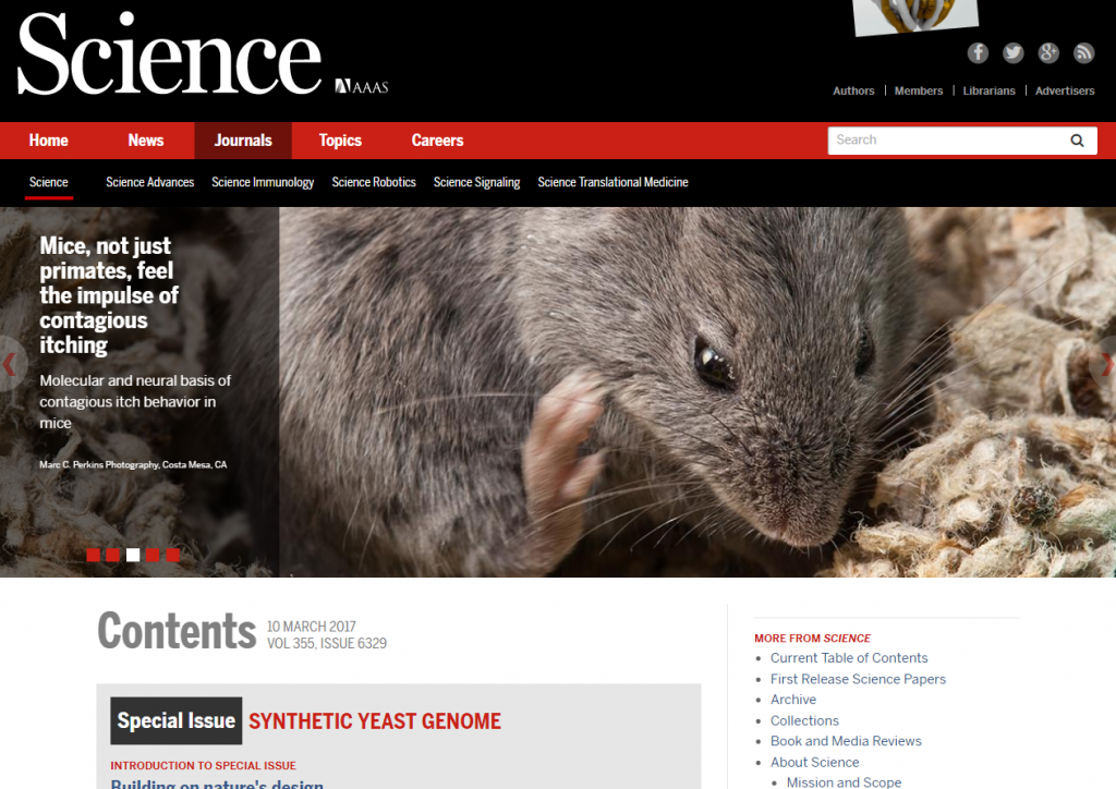 A mouse scratching its face on Science's website