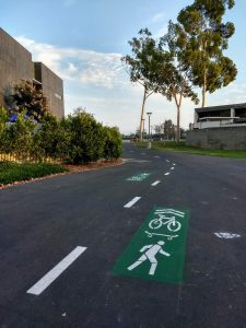 Bike lanes painted on a campus