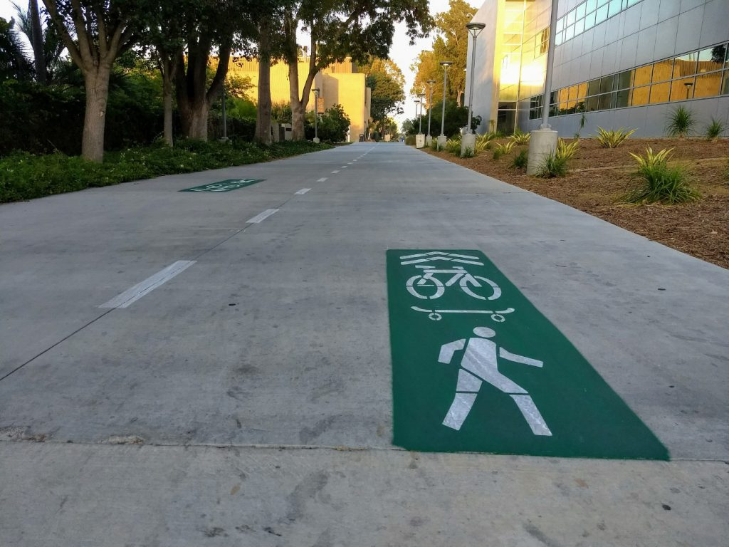 Bike path on campus